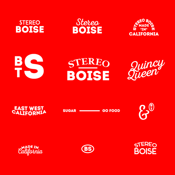 These are some logo concepts I made for a local business.